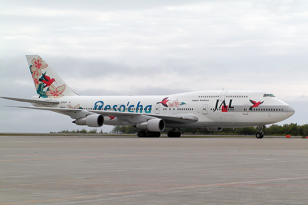 B747-300 JA8184 JAL Reso'cha HKD 2007.05