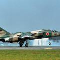 Photos: F-1 8241 8sq 1994AGG mark 三沢 1995.09