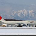 Photos: B747-346 JA8177 JAL 2007.01(1)