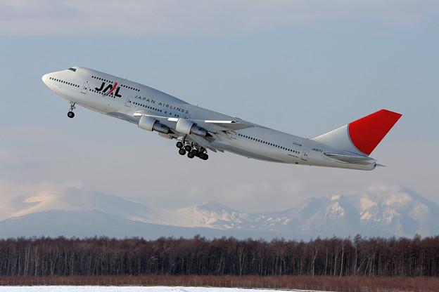 B747-346 JA8177 JAL 2007.01(2)