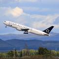 Photos: Boeing 767 STAR ALLIANCE ANA JA614A takeoff