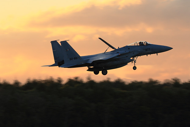 Photos: F-15J 203sqの一日 (8)
