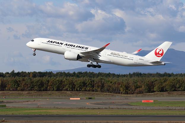 A350-900 JA05XJ JAL 首里城再建応援