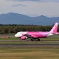 Photos: A320 JA824P Peach