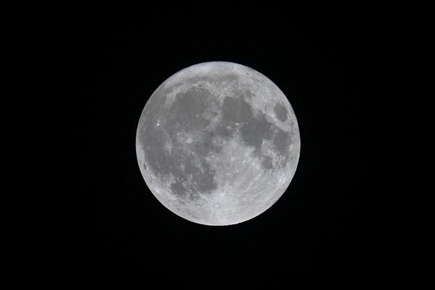 月大きさ比較令和2年10月31日の月