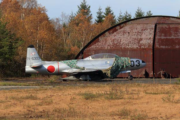 T-33A 晩秋