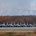 Photos: F-15 203sqが6機並んだ