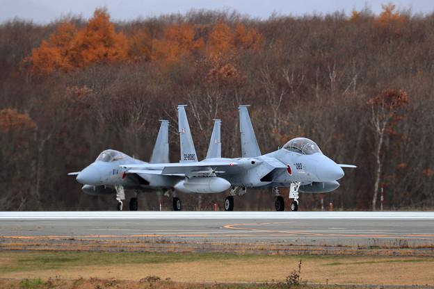F-15DJ 8080 203sq line up