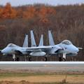 Photos: F-15DJ 8080 203sq line up