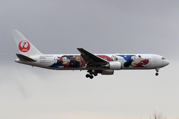 Boeing 767-300 JAL Fantasia 80yearsAnnv JA622J 初飛来(1)