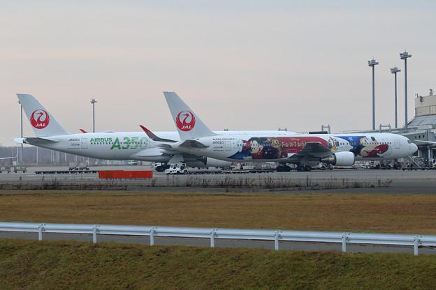 Boeing 767-300 JAL Fantasia 80yearsAnnv JA622J 初飛来(2)