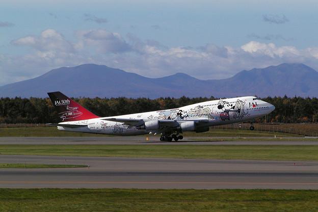 B747-446 JA8908 JAL 50th anniversary 2001