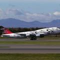 Photos: B747-446 JA8908 JAL 50th anniversary 2001