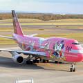 B747-446 JA8904 JAL 50th anniversary 2001.10
