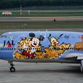 Photos: B747-446 JA8083 JAL50th anniversary 2001 (2)