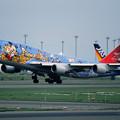 Photos: B747-446 JA8083 JAL50th anniversary 2001 (3)