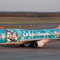 Photos: B747-446 JA8905 JAL 50th anniversary 2002.10
