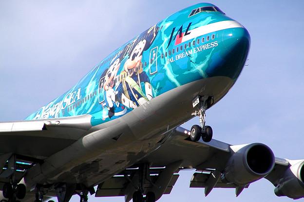B747-446 JA8905 JAL 50th anniversary 2002.08