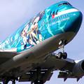 Photos: B747-446 JA8905 JAL 50th anniversary 2002.08