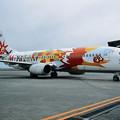 Photos: B737-400 JA8994 JAL Phoenix Express Miyazaki  2001