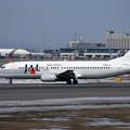 Photos: B737-400 JA8995 JAL Flower Jet 2001