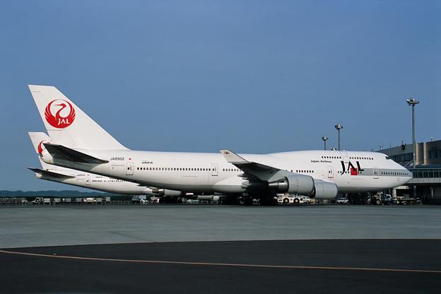 B747-446 JA8902 JAL CTS 2001夏