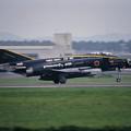 Photos: F-4EJ 8384 8sq 40th anniversary CTS 2000.08 (5)