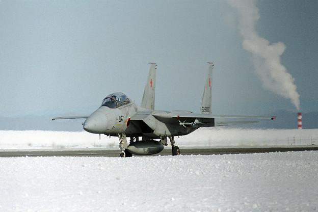F-15DJ 8087 202sq  1995