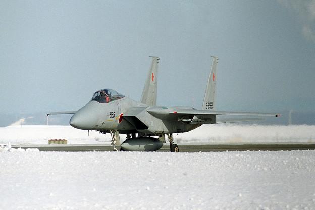 F-15J 8925 202sq 1995