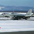 Photos: F-15J 8923+8920 202sq 1995