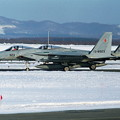 Photos: F-15J 8923+8920 202sq CTS 1995