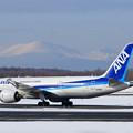 Boeing787 JA821A ANA771 伊丹から到着