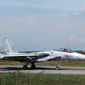 F-15J 8854 203SQ  CTS 1990ACM