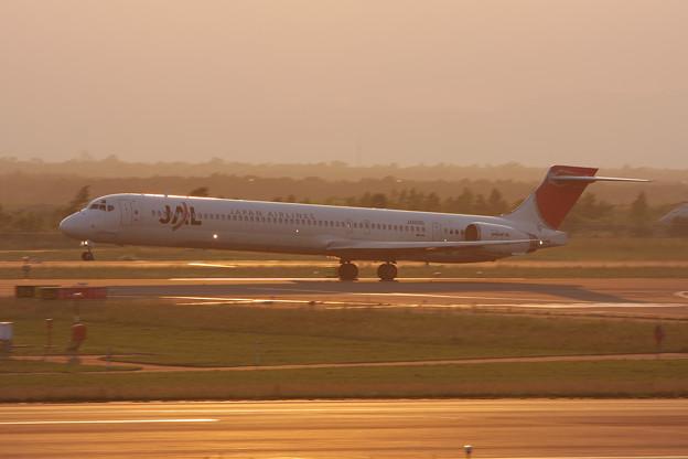 MD-90 JA005D JAL 2008