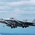 Photos: F-15J 8831+8913 203sq CTS 1992