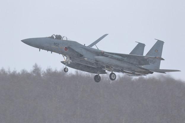 Photos: F-15J 雪のなか return to Base