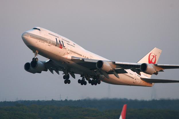 B747-446 JA8090 JAL CTS 2005
