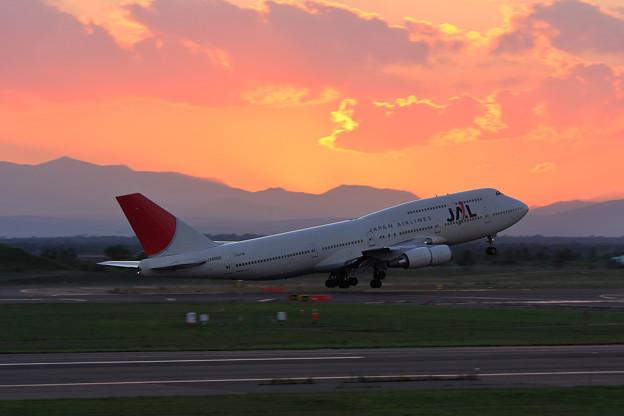 B747-446 JA8090 JAL CTS 2008