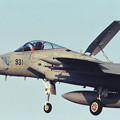 Photos: F-15J 203sq 1992年戦競機 8931