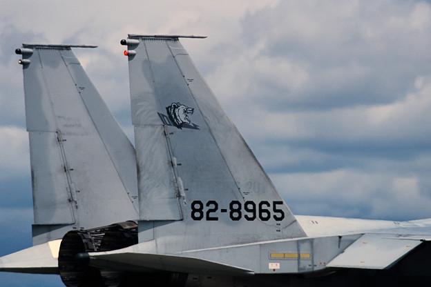 Photos: F-15J 201sq 2001年戦競機 8965