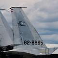 F-15J 201sq 2001年戦競機 8965