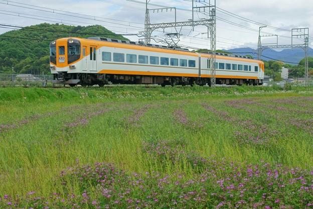 Photos: 16010系 特急