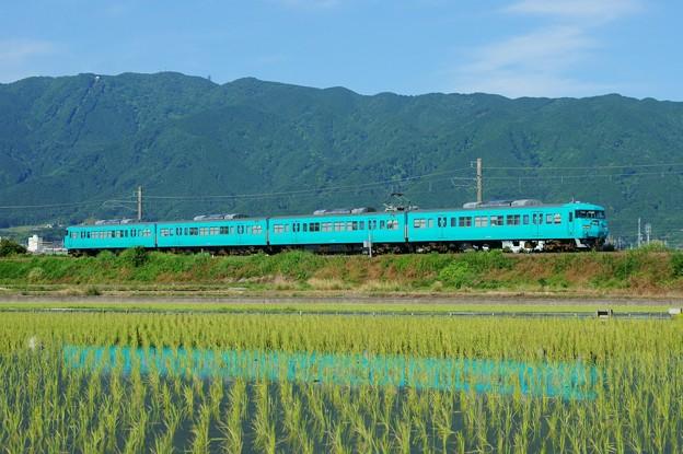 Photos: 117系@和歌山線