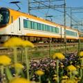 Photos: 夕方の近鉄特急