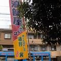写真: 阪堺電車@住吉大社