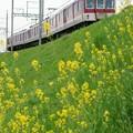 写真: 近鉄田原本線