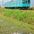 Photos: 105系:和歌山線