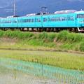 Photos: 117系:和歌山線