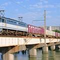 写真: 84レ【EF65 2081牽引】