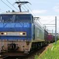 Photos: 1086レ【EF200-18牽引】